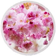 Spring Cherry Blossoms  Round Beach Towel