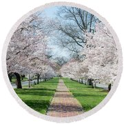 Spring Cherry Trees Round Beach Towel