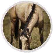 Spring Creek Basin Wild Horse Grazing Round Beach Towel