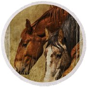Spring Creek Basin Wild Horses Round Beach Towel
