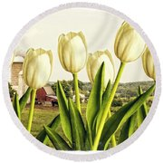 Spring Down On The Farm Round Beach Towel