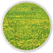 Spring Farm Panorama With Dandelion Bloom In Maine Canvas Poster Print Round Beach Towel