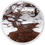 Spring Into Winter Round Beach Towel