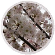 Spring Is Beautiful - A Cloud Of Pastel Pink Blossoms Round Beach Towel