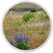 Spring Lupines And Cheatgrass Round Beach Towel