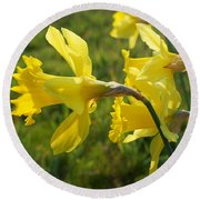 Spring Meadow Field Daffodil Flowers Round Beach Towel