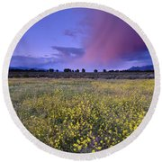 Spring Storm At Andalucia Round Beach Towel