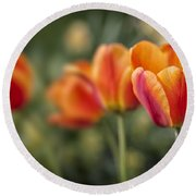 Spring Tulips Round Beach Towel by Adam Romanowicz