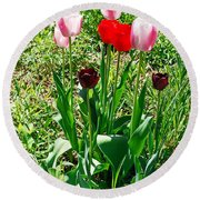Spring Tulips Round Beach Towel