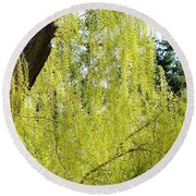 Spring Weeping Willow Round Beach Towel