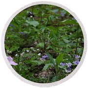 Spring Wildflowers Along Panther Branch Trail Frozen Head Tennessee State Park Tennessee Round Beach Towel