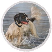 Springer Spaniel Round Beach Towel