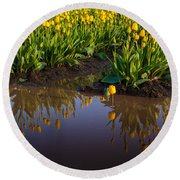 Springs Reflection Round Beach Towel