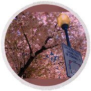 Springtime In Charlotte Round Beach Towel by Lydia Holly