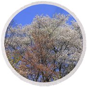 Springtime In Great Balsam Mountains Round Beach Towel