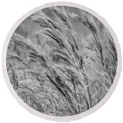 Springtime In The Field - Bw Round Beach Towel
