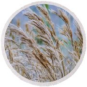 Springtime In The Field Round Beach Towel