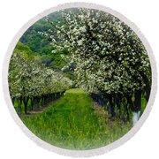 Springtime In The Orchard Round Beach Towel by Bill Gallagher