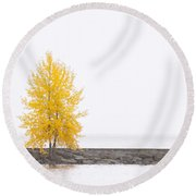 Square Diptych Tree 12-7693 Set 2 Of 2 Round Beach Towel