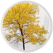 Square Tree Round Beach Towel