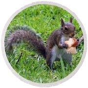 Squirrel Eats Mushroom Round Beach Towel