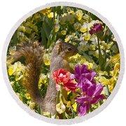Squirrel In The Botanic Garden-dallas Arboretum V5 Round Beach Towel