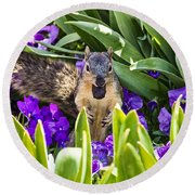 Squirrel In The Botanic Garden Round Beach Towel