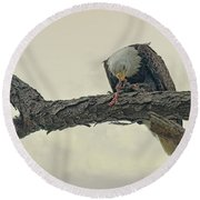Squirrel Lunch Round Beach Towel