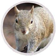 Squirrel Profile Round Beach Towel