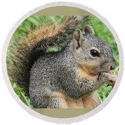 Squirrel Thief Round Beach Towel