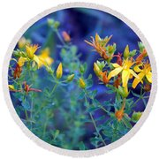 St John's Wort In The Forest Round Beach Towel