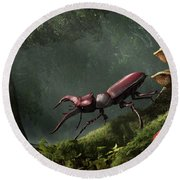 Stag Beetle Round Beach Towel by Daniel Eskridge