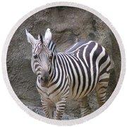 Standalone Zebra Round Beach Towel