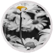 Standing Out From The Crowd 2 Round Beach Towel