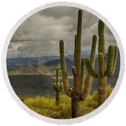 Standing Tall In The Sonoran Desert  Round Beach Towel