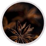 Star Anise Study Round Beach Towel