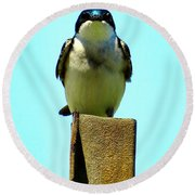 1 Swallow Never Makes A Summer Round Beach Towel
