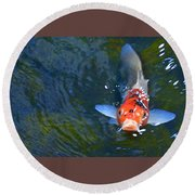 Stare Down With A Koi Round Beach Towel
