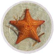 Starfish 1 Of Bottom Harbour Sound Round Beach Towel
