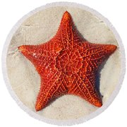 Starfish 4 Of Bottom Harbour Sound Round Beach Towel