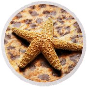 Starfish Enterprise Round Beach Towel by Andee Design