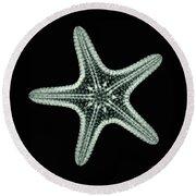Starfish X-ray Round Beach Towel