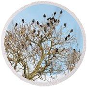 Starlings For Leaves - Sturnus Vulgaris Round Beach Towel