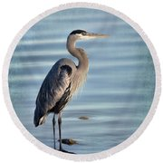 Stately-great Blue Heron Round Beach Towel