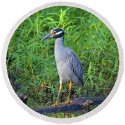 Stately Heron Round Beach Towel