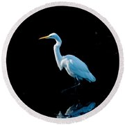Stately Snowy Egret Round Beach Towel