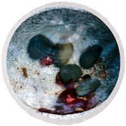 Stones And Fall Leaves Under Water-43 Round Beach Towel