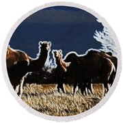Stop And Stare V3 Round Beach Towel