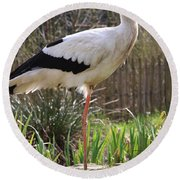 Stork Round Beach Towel