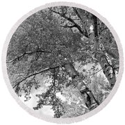 Storm Over The Cottonwood Trees - Black And White Round Beach Towel